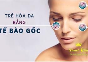 Chuyên sâu căng bóng da bằng tế bào gốc  OR HA ( Facial care with stem cell)